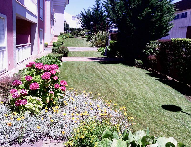 construção e reabilitação de jardins